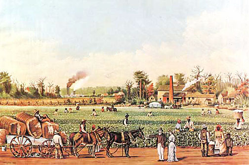 Antebellum Cotton Plantation